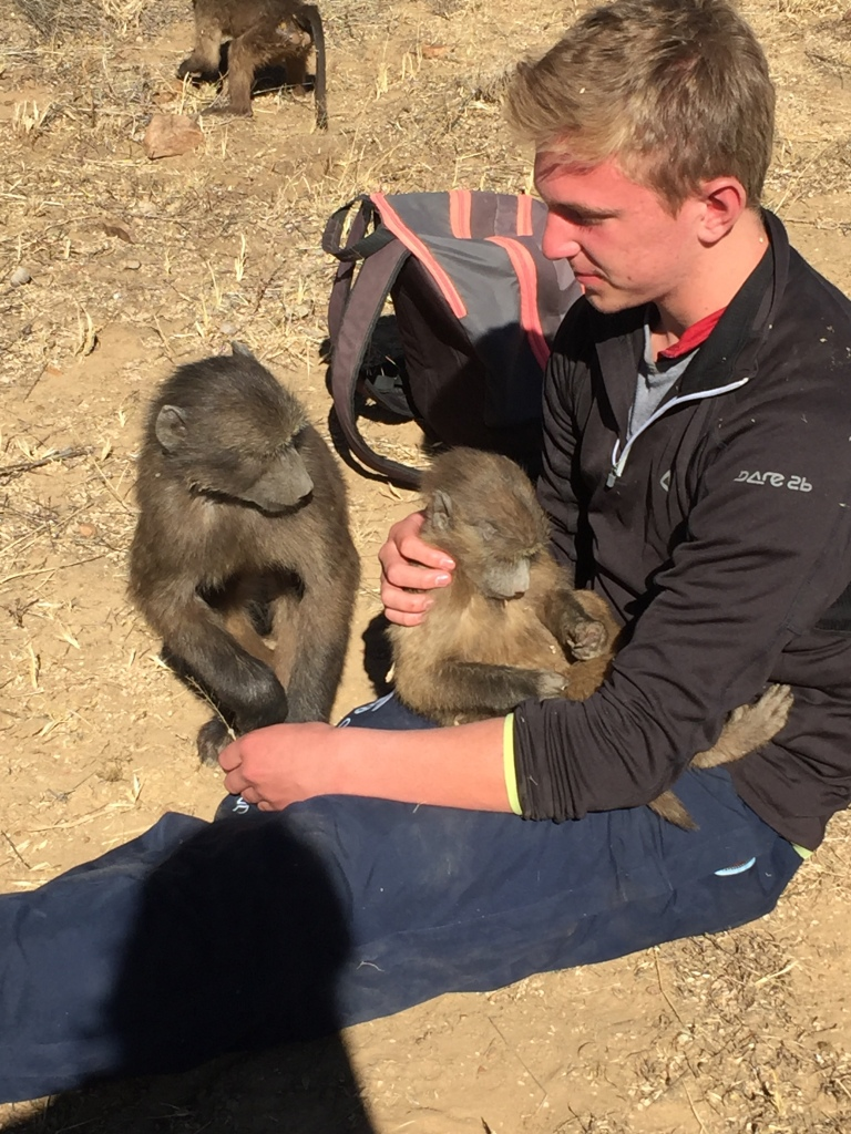 Enjoying the experience of walking with baboons in Namibia
