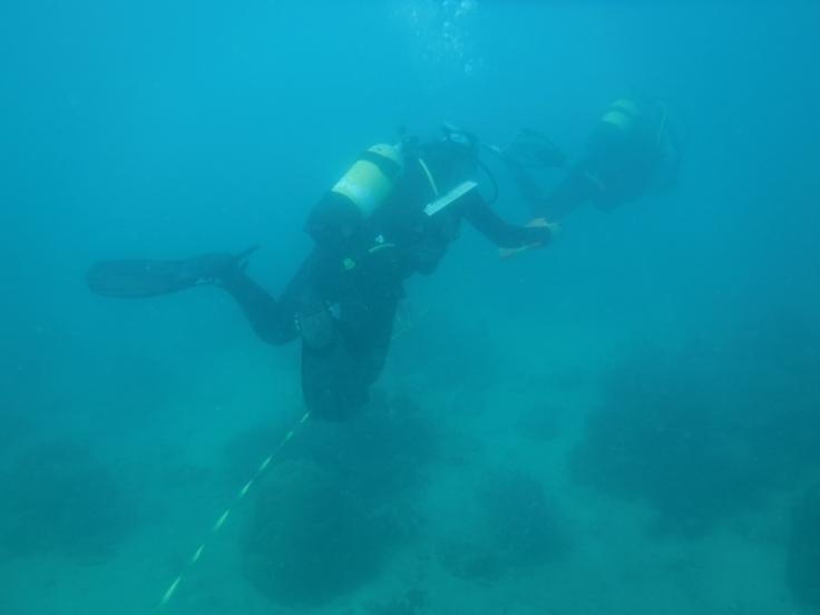 Scuba diving in Madagascar underwater shots