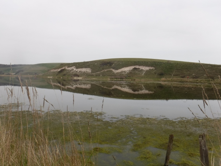 A visit to Seaford Nature reserve, near Cuckmere Haven beach
